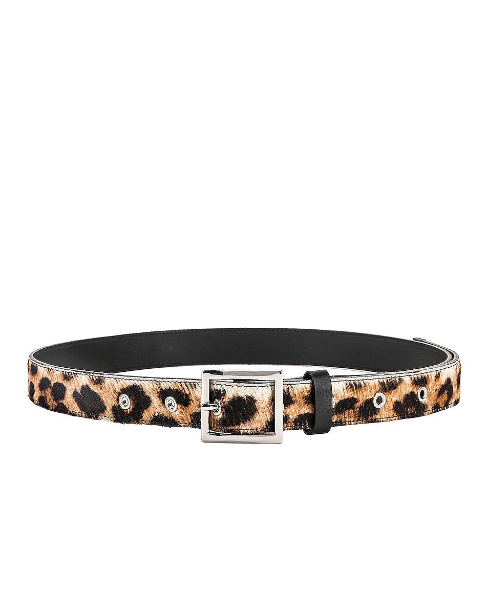 Image 2 of Amiri Leopard Belt in Leopard