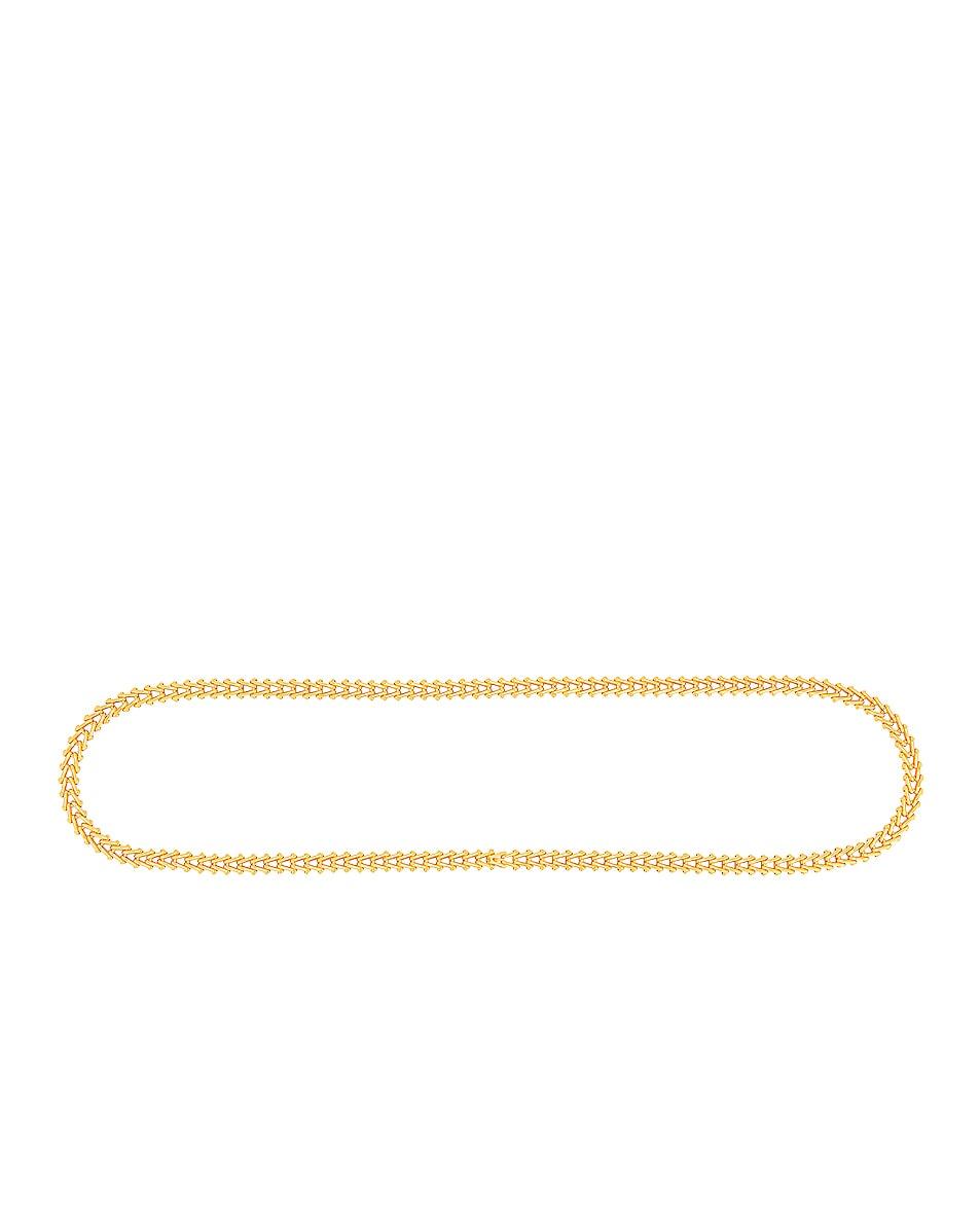 Image 1 of Bottega Veneta Triangle Chain Belt in Oro