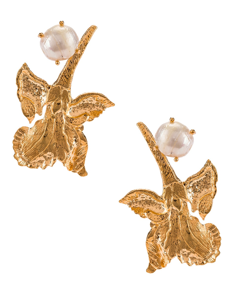 Image 1 of Christie Nicolaides Earrings in Gold