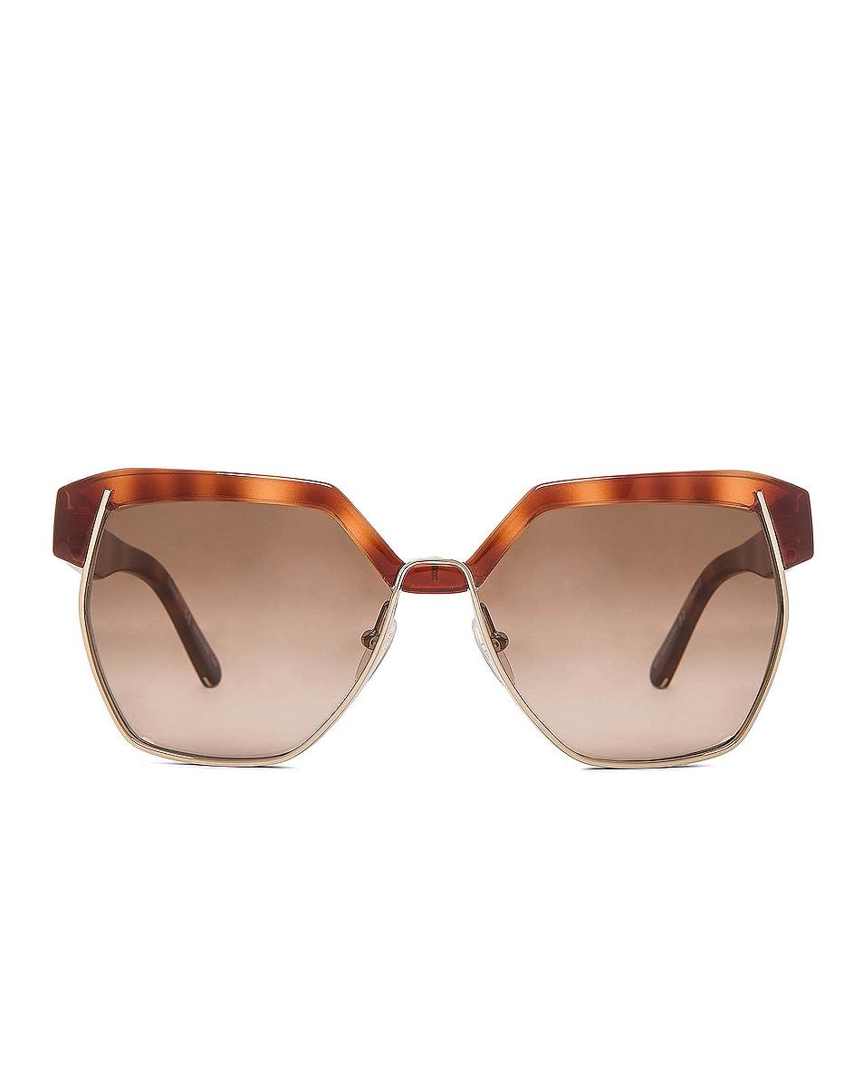 Image 1 of Chloe Dafne Sunglasses in Light Havana