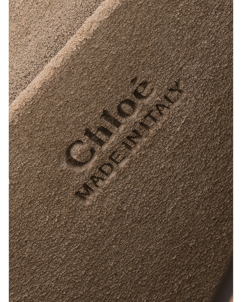 Image 7 of Chloe Medium Nile Calfskin & Suede Bracelet Bag in Biscotti Beige
