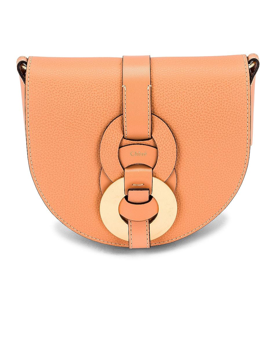 Image 1 of Chloe Darryl Saddle Bag in Peach Bloom