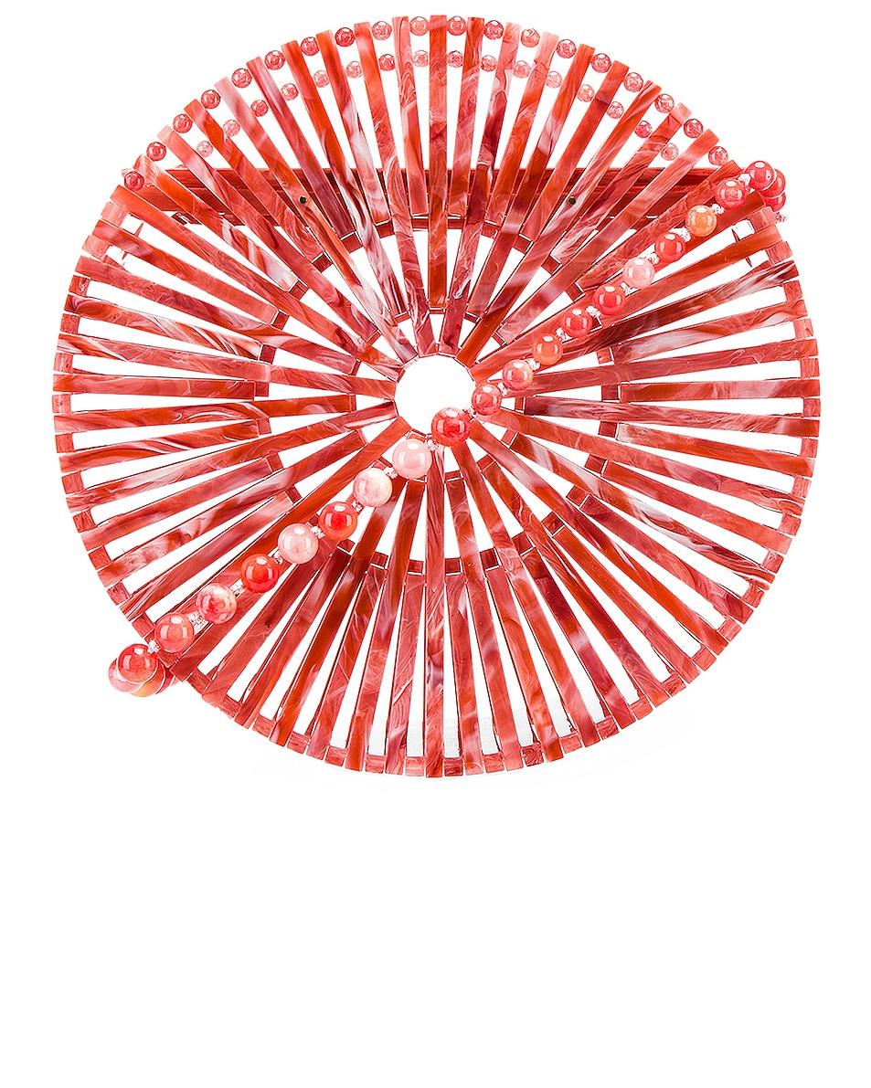 Image 1 of Cult Gaia Acrylic Luna Crossbody Bag in Melon
