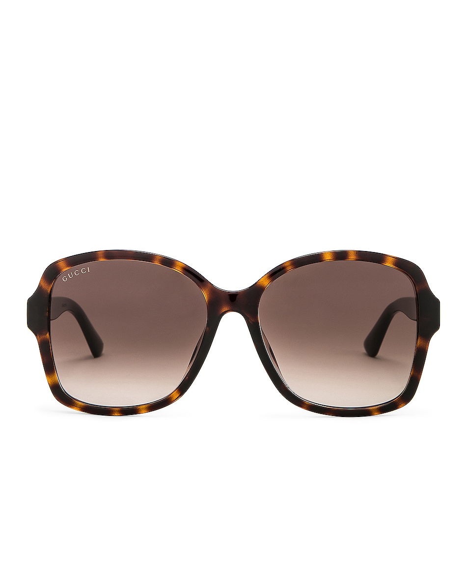 Image 1 of Gucci Logo Acetate Sunglasses in Shiny Dark Havana & Brown