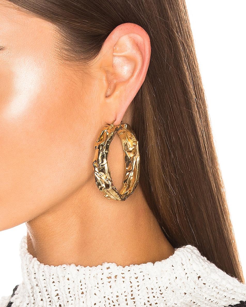 Image 2 of Jil Sander Flattened Earrings in Gold