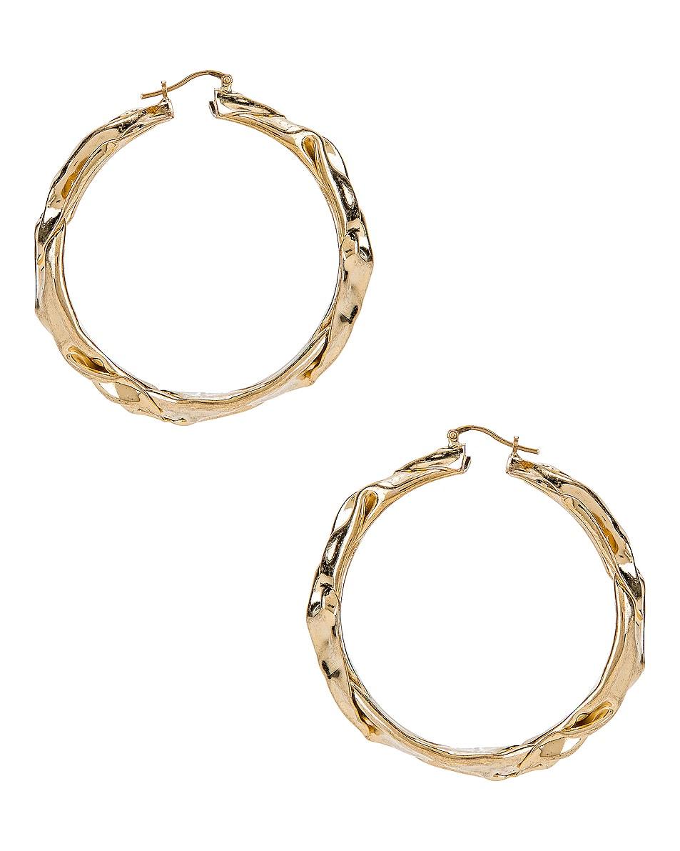 Image 4 of Jil Sander Flattened Earrings in Gold