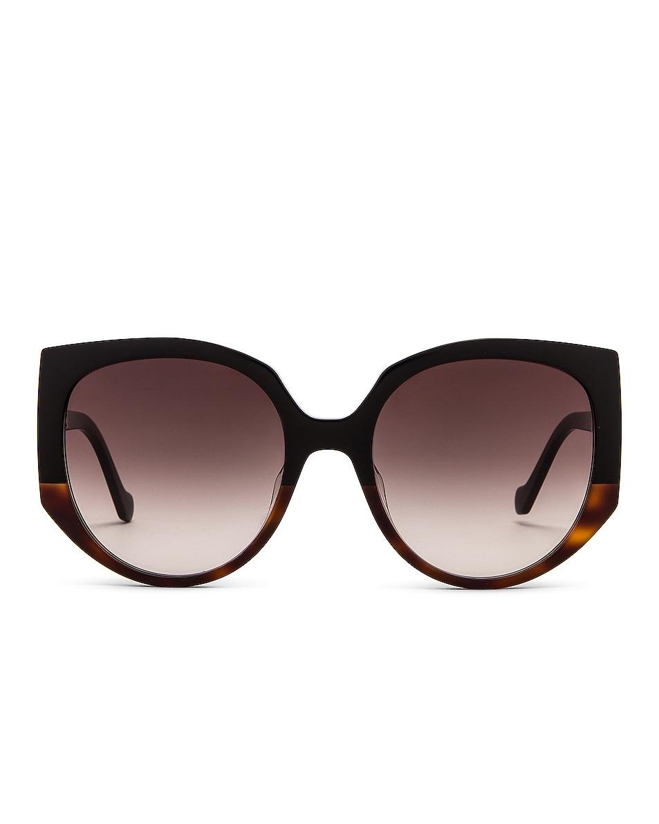 Image 1 of Loewe Thin Acetate Sunglasses in Black & Gradient Brown