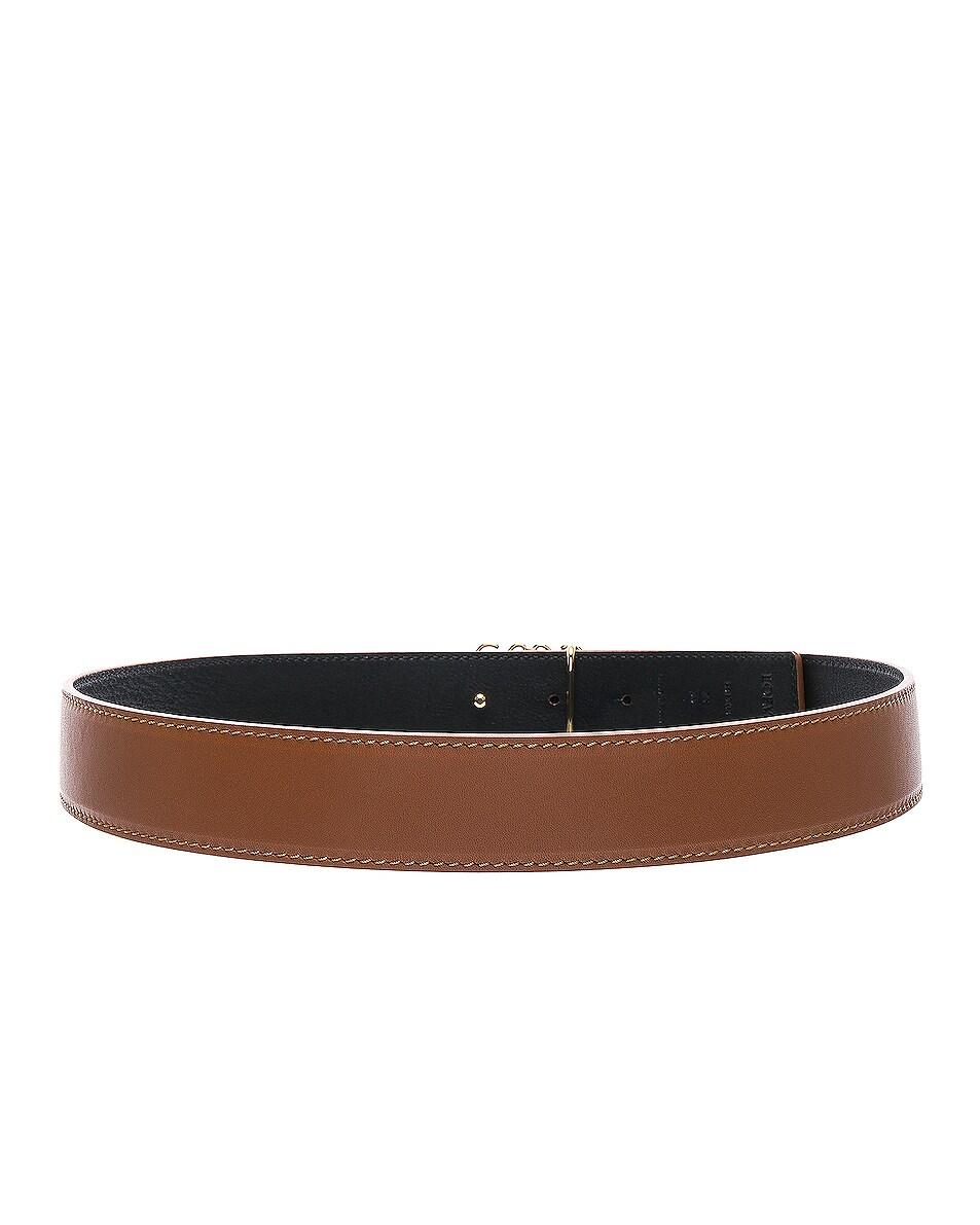 Image 3 of Loewe Anagram Belt in Tan, Black & Gold
