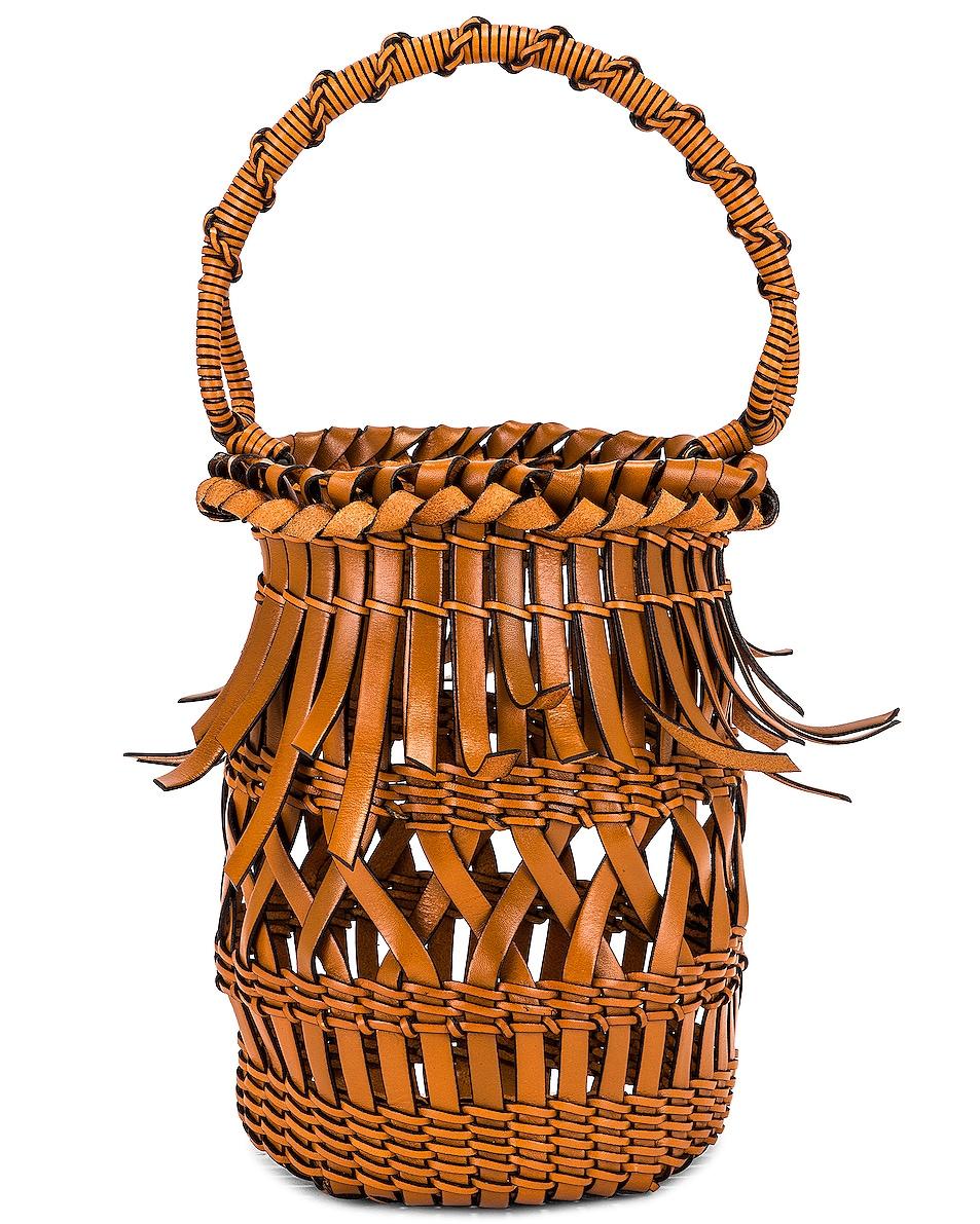 Image 1 of Loewe Fringes Bucket Bag in Tan