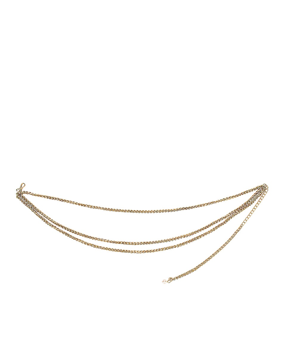 Image 1 of Magda Butrym Willow Belt in Gold