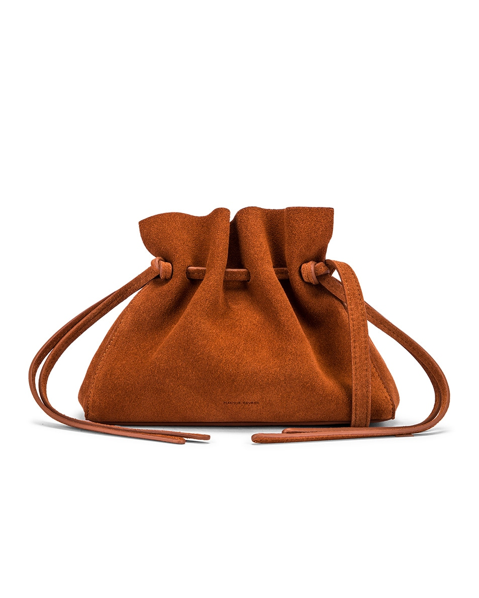 Image 1 of Mansur Gavriel Mini Protea Bag in Rust