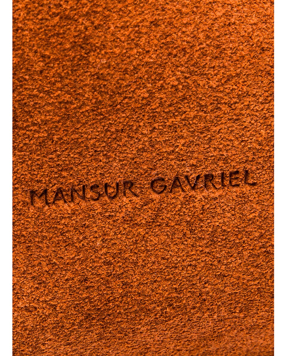 Image 6 of Mansur Gavriel Mini Protea Bag in Rust