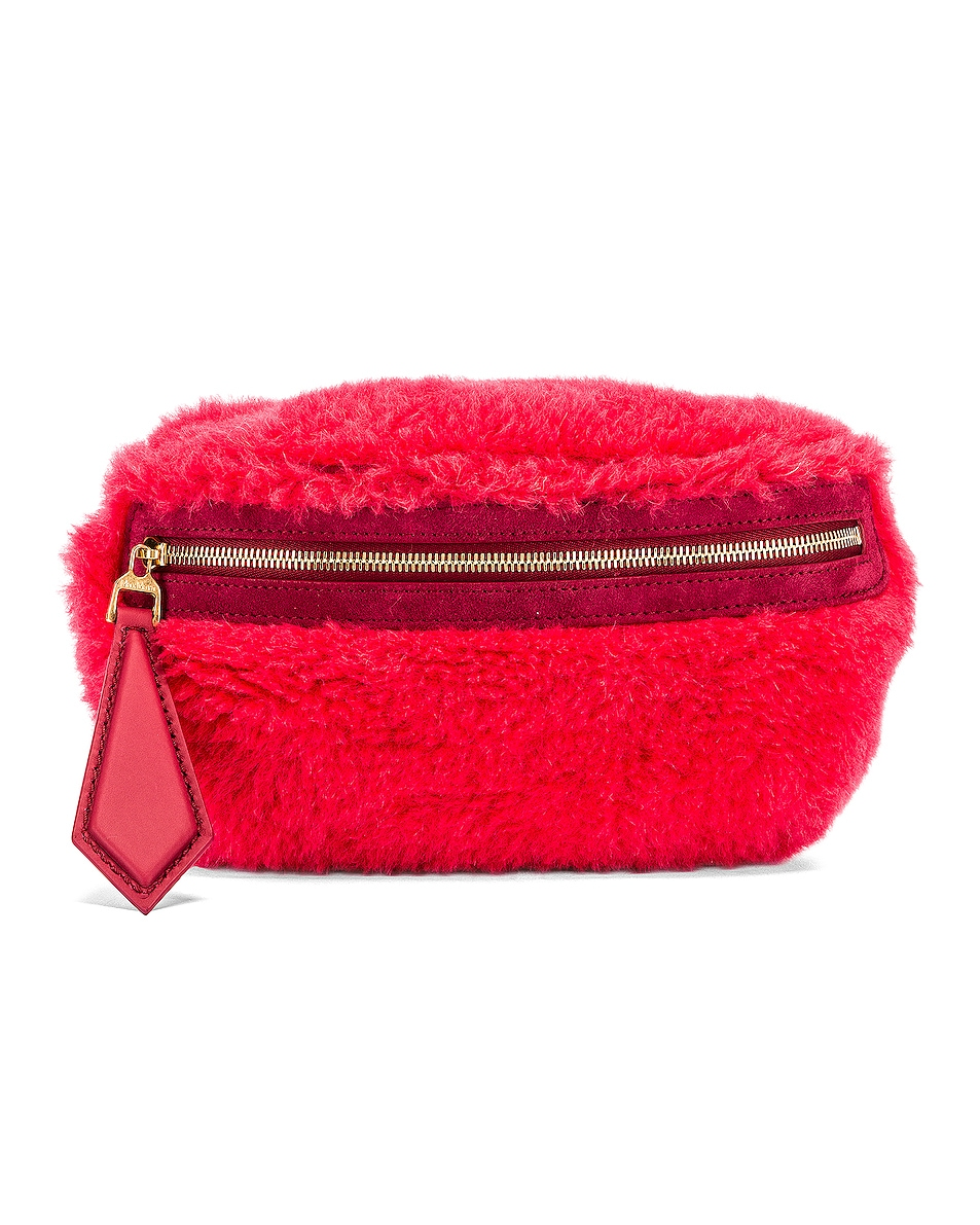 Image 1 of Max Mara Teddy Fanny Pack in Coral
