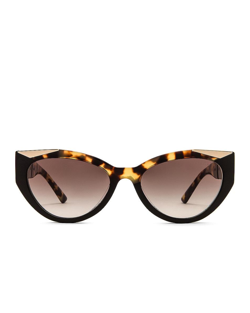 Image 1 of Prada Monochrome Cat Eye Sunglasses in Black Medium Havana & Grey Gradient