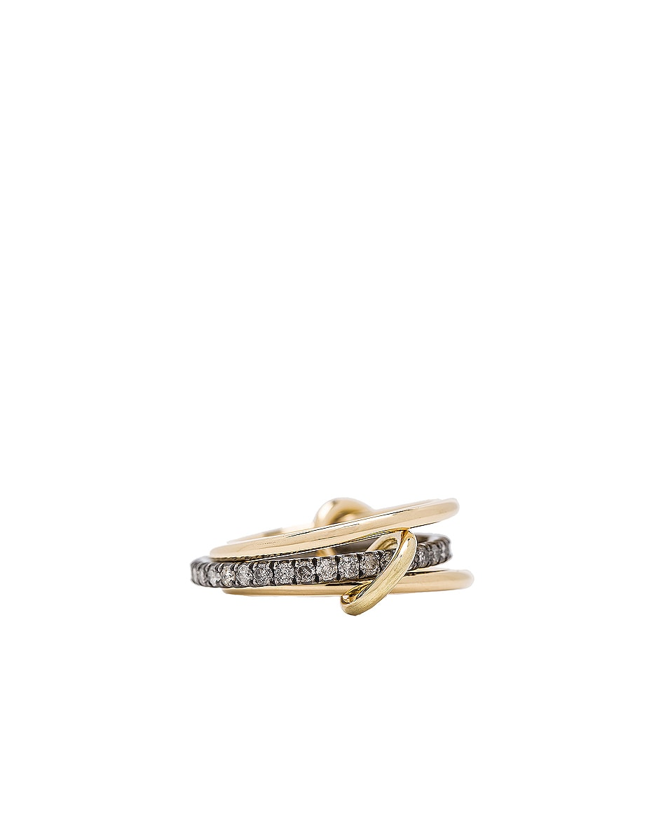 Image 3 of Spinelli Kilcollin Tigris Ring in 18K Yellow Gold