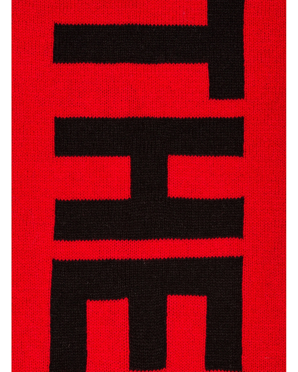 Image 3 of The North Face Logo Scarf in TNF Red & TNF Black