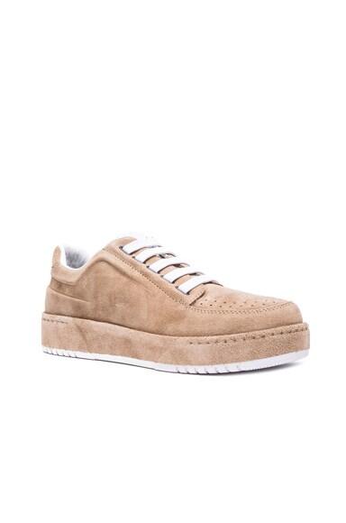 PL31 Low Top Suede Sneakers