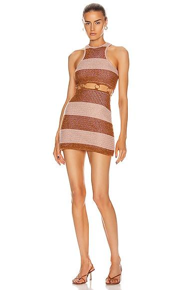 Stone Roses Mini Dress