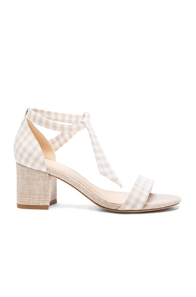 Canvas Gingham Clarita Heels