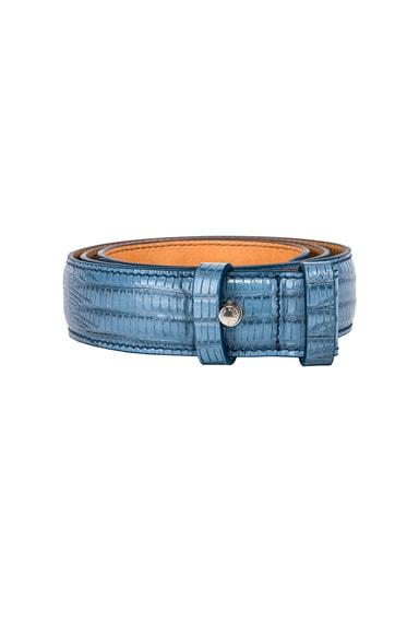 Anemone Belt