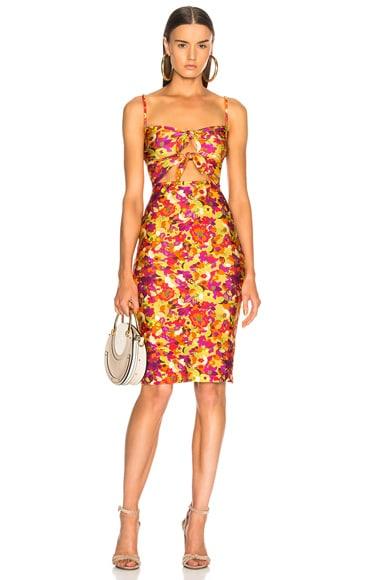 Fruits Print Short Dress