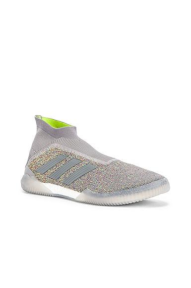 Predator 19+ Training Sneaker
