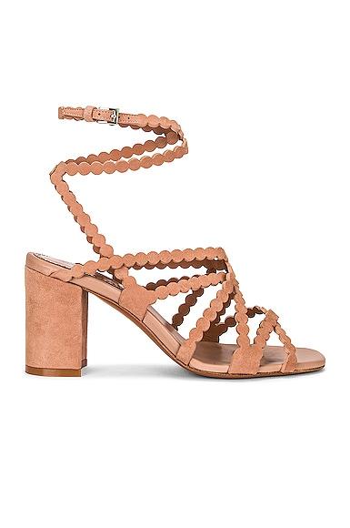 Alaïa Chamois Minimal Sandals In Chair