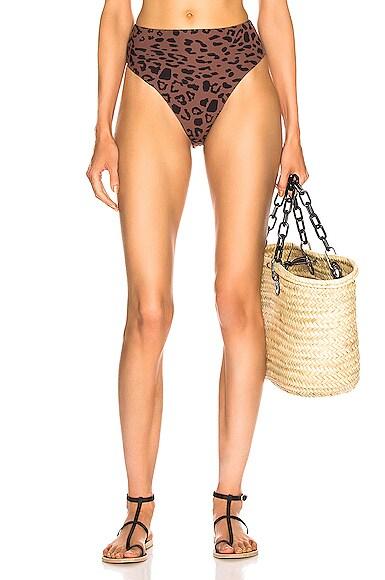 Alton Print Bikini Bottom