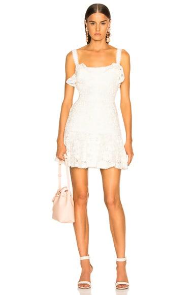 Linzi Dress