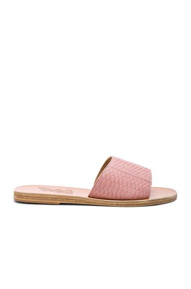 Snakeskin Embossed Taygete Sandals