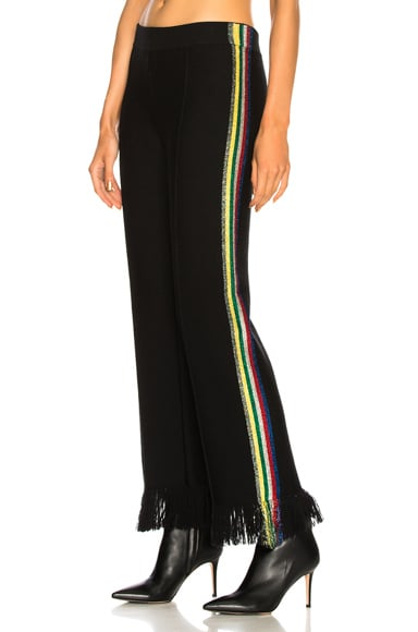 Lurex Jacquard Side Stripe Fringe Trim Pants