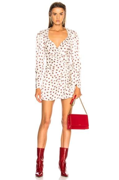 Consuelo Mini Dress