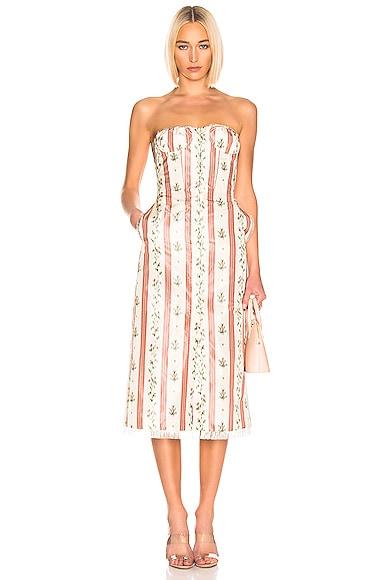 Olgha Ladies Dress