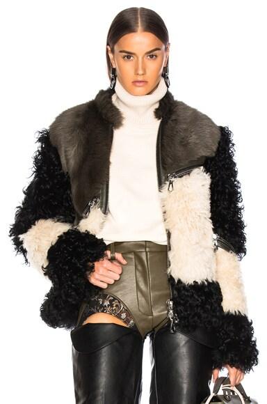 Seal Jacket