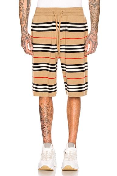 Icon Stripe Bermuda Shorts