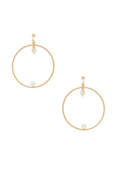 Darcey Hoop Earrings