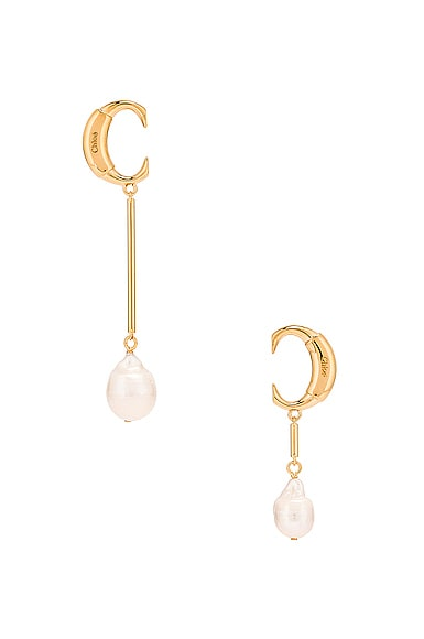 C Drop Earrings