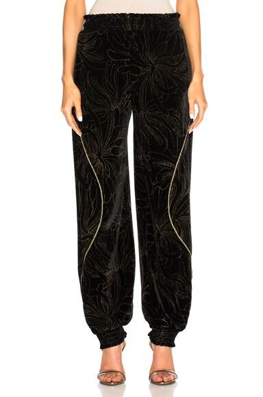 Gold Pigment Printed Velvet Sweatpants