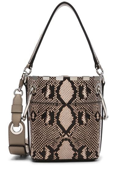 Mini Roy Python Print Leather Bucket Bag