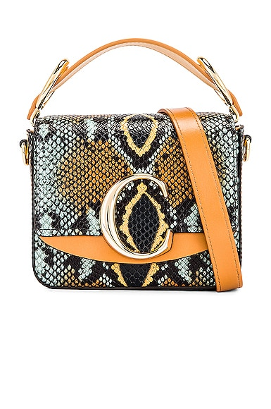 Mini C Embossed Python Box Bag