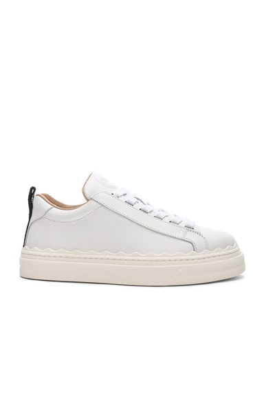 Lauren Low Top Sneakers
