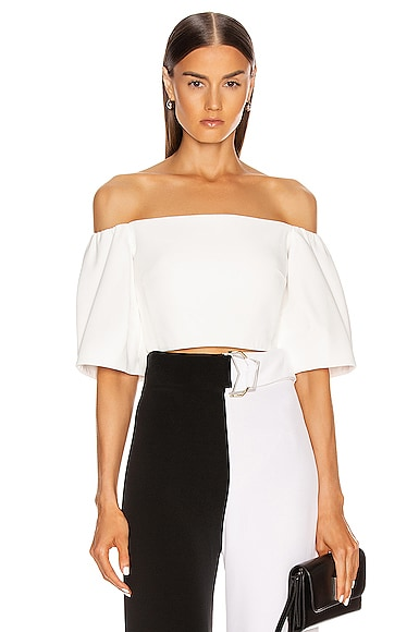 Strapless Cropped Top