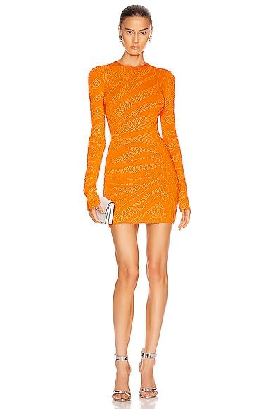 Studded Zebra Print Knit Dress