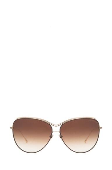 Starling Polarized Sunglasses