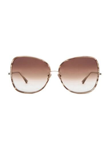 Bluebird Two Sunglasses