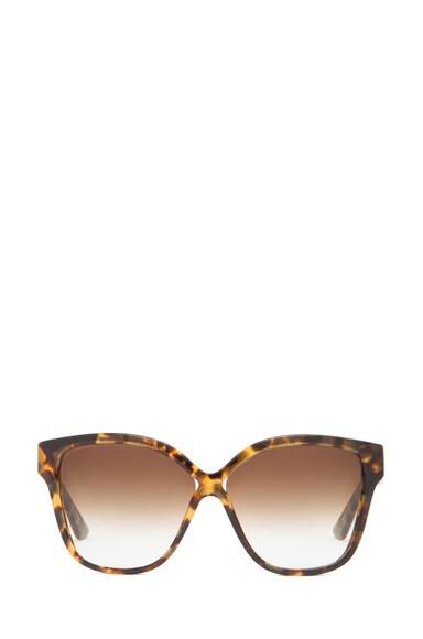 Paradis Sunglasses