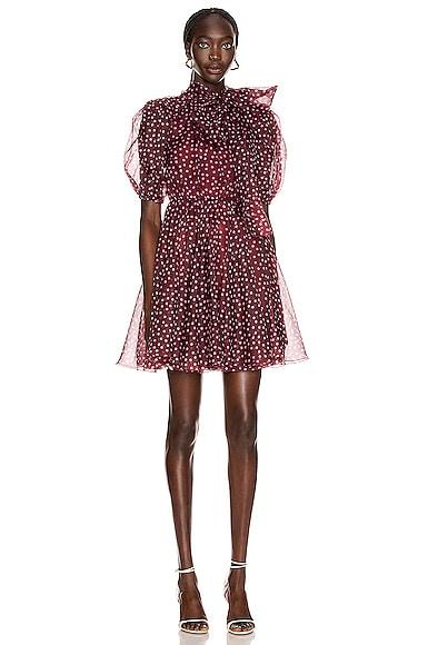 Tie Polka Dot Mini Dress