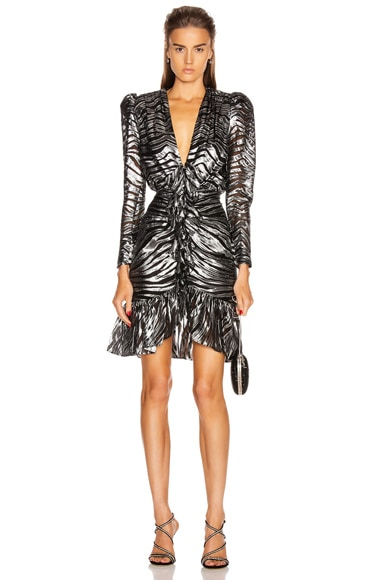 Long Sleeve Zebra Mini Dress