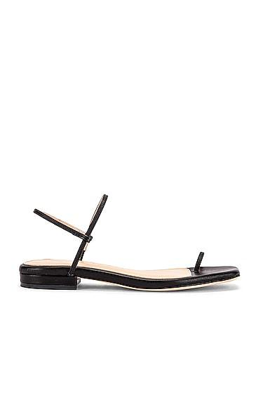 1.3 Sandal