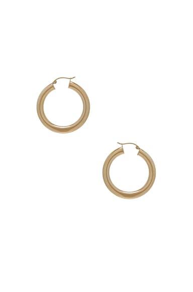 14K Gold Hoop XXX Earring